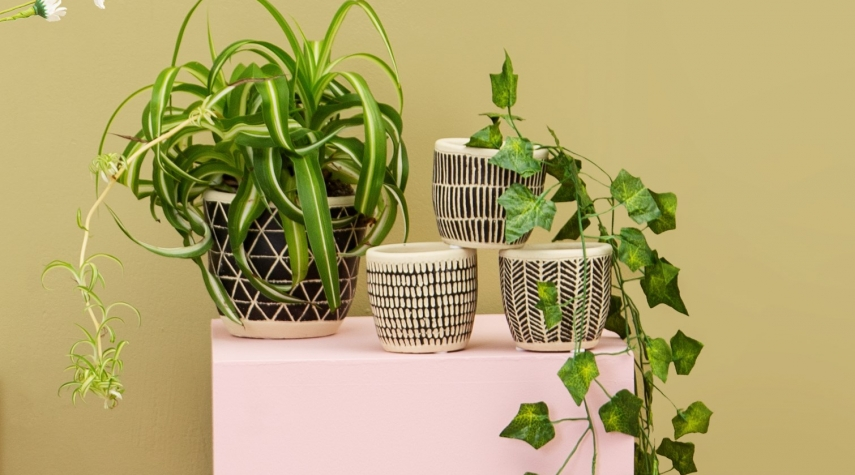 Scandi mini Cement pots